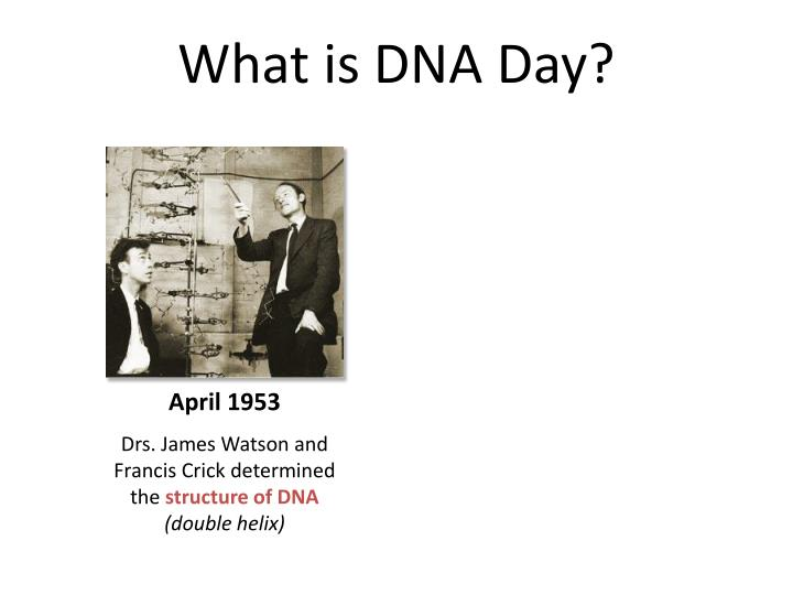 What is DNA Day?