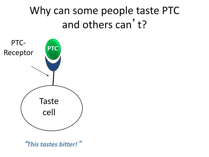 Why can some people taste PTC