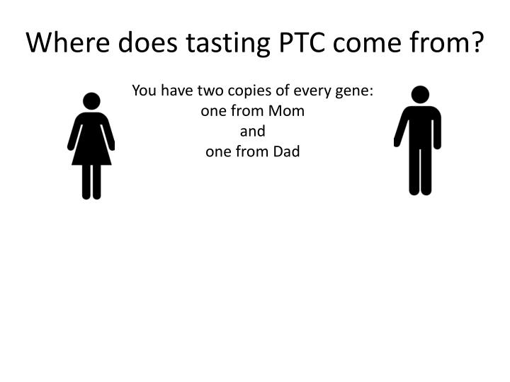 Where does tasting PTC come from?