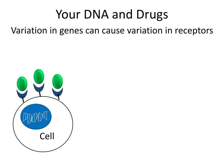 Your DNA and Drugs