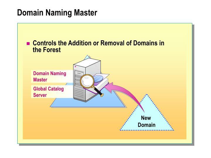 Domain Naming
