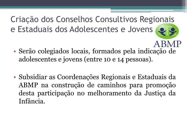 Criação dos Conselhos Consultivos Regionais e Estaduais dos Adolescentes e Jovens