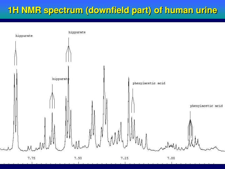 1H NMR spectrum