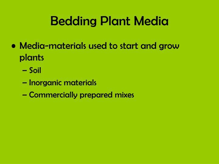 Bedding Plant Media