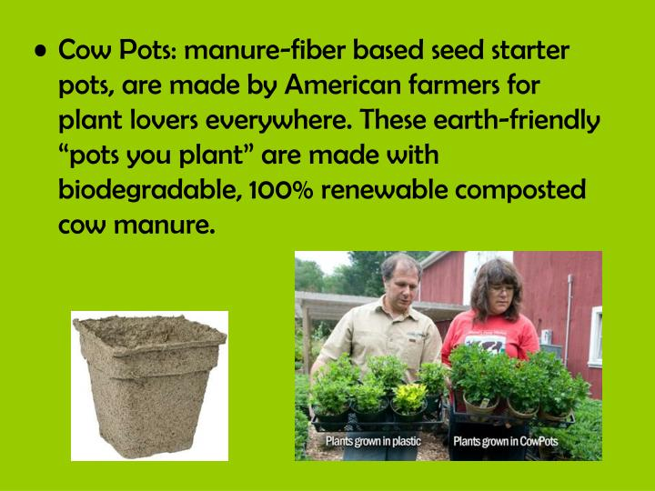 """Cow Pots: manure-fiber based seed starter pots, are made by American farmers for plant lovers everywhere. These earth-friendly """"pots you plant"""" are made with biodegradable, 100% renewable composted cow manure."""