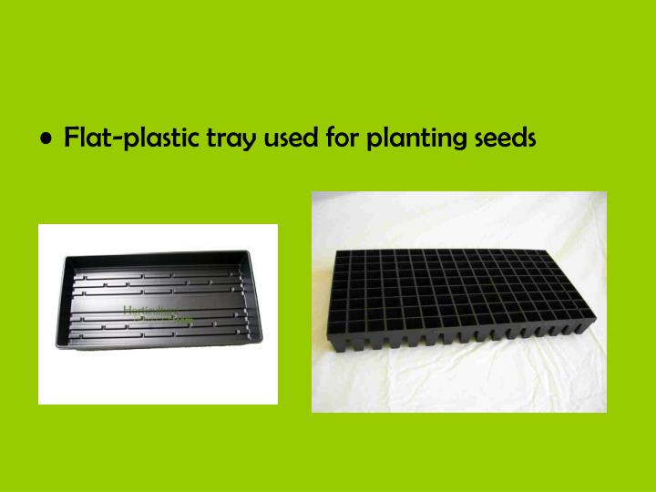 Flat-plastic tray used for planting seeds