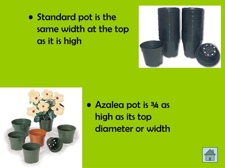 Standard pot is the same width at the top as it is high