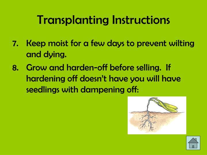 Transplanting Instructions