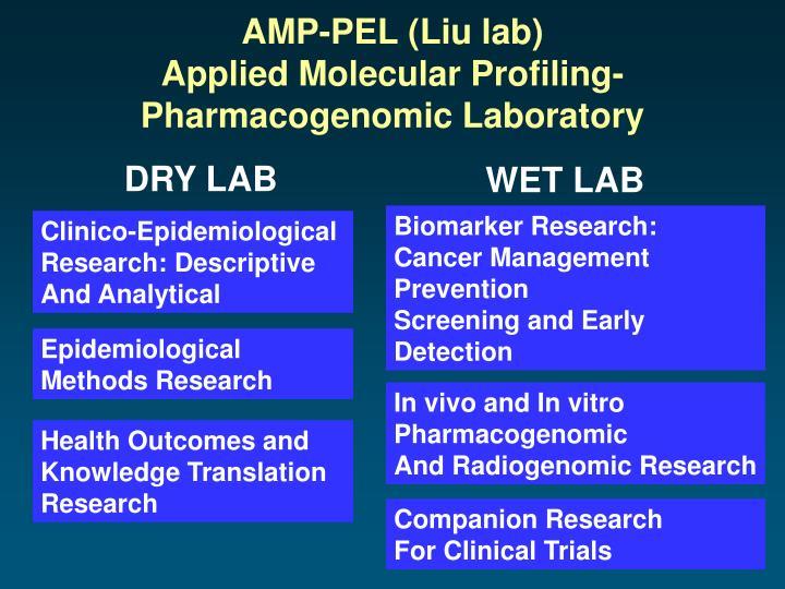 AMP-PEL (Liu lab)
