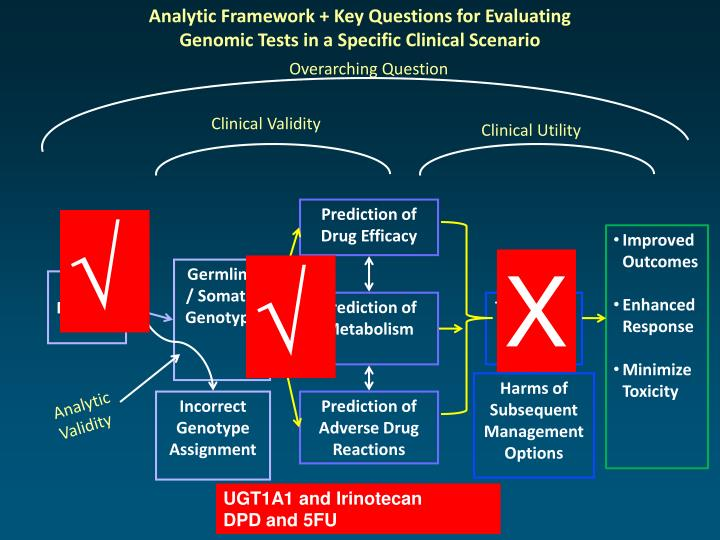 Analytic Framework + Key Questions for Evaluating