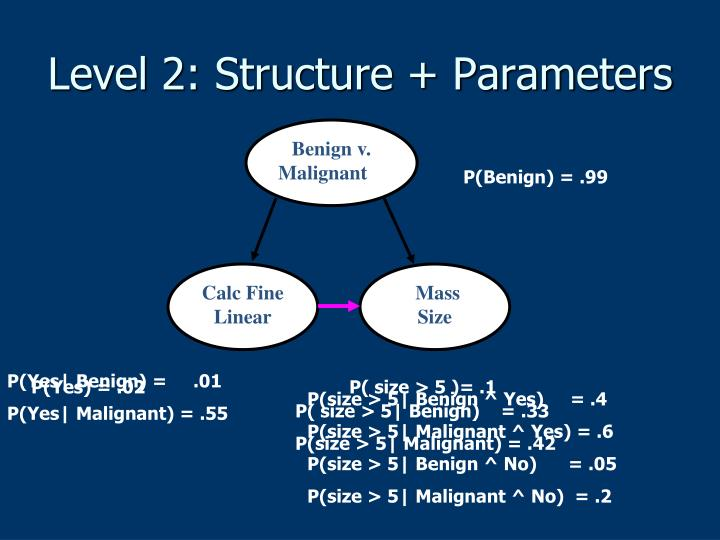 Level 2: Structure + Parameters