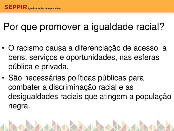 Por que promover a igualdade racial?