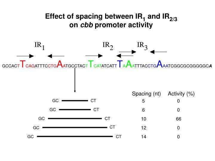 Effect of spacing between IR