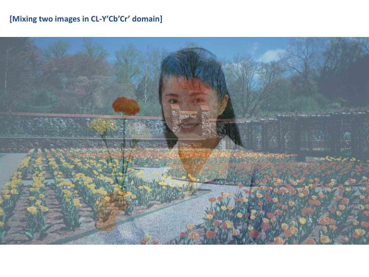 [Mixing two images in CL-Y'Cb'Cr' domain]