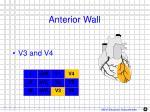 anterior wall1