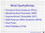 atrial dysrhythmias1