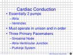 cardiac conduction1