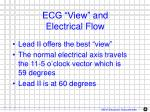 ecg view and electrical flow