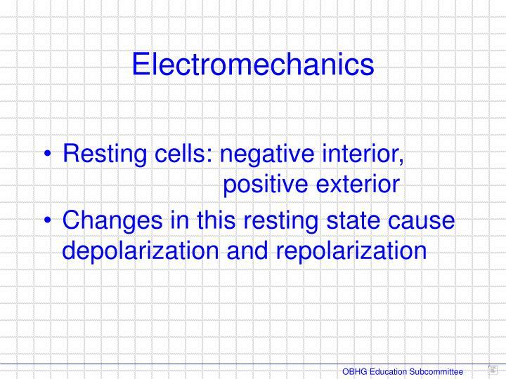 Resting cells: negative interior,     positive exterior