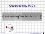 quadrageminy pvc s