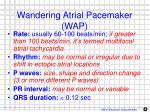 wandering atrial pacemaker wap
