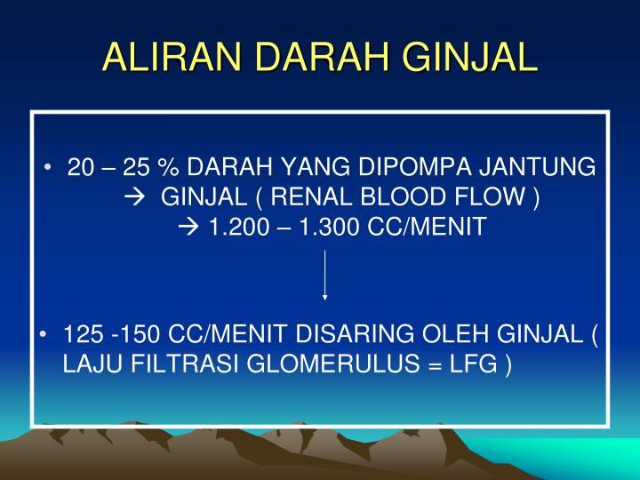 ALIRAN DARAH GINJAL