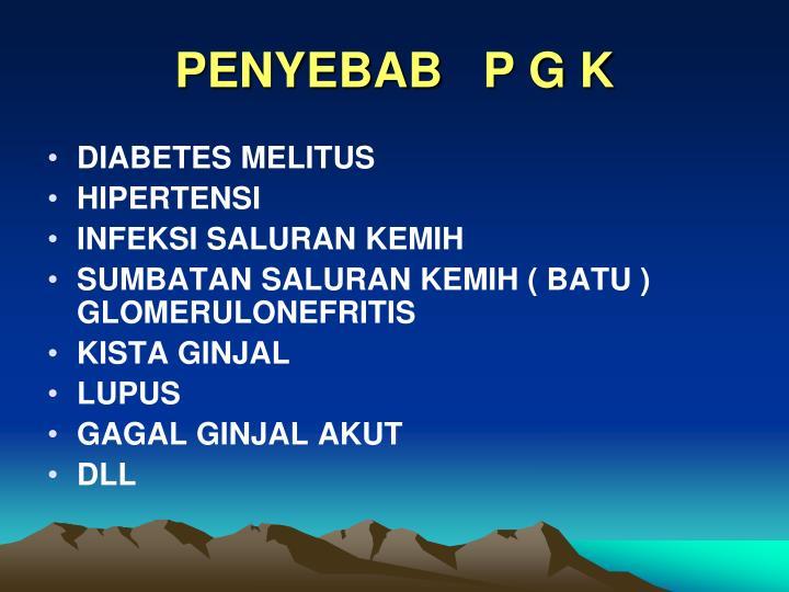 PENYEBAB   P G K