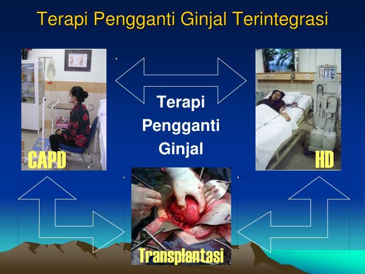Terapi Pengganti Ginjal Terintegrasi