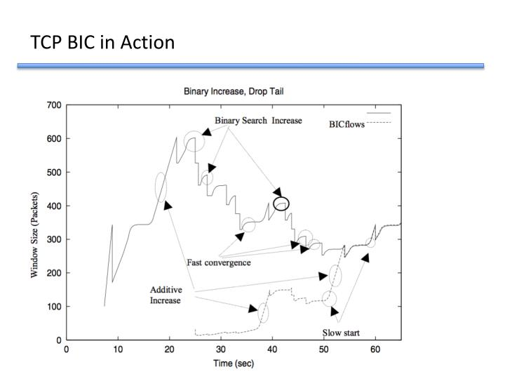 TCP BIC in Action