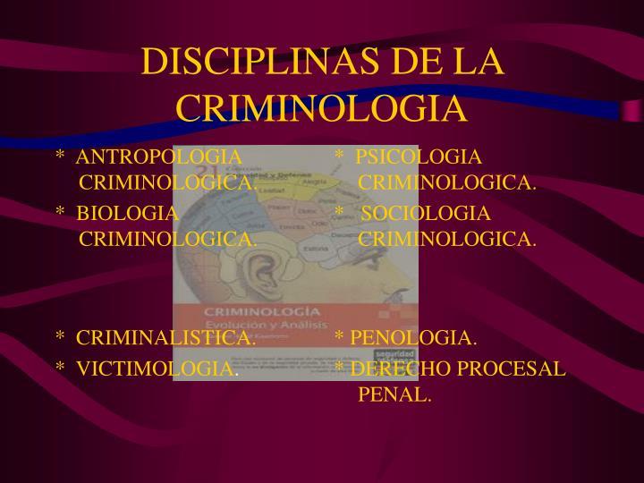 DISCIPLINAS DE LA CRIMINOLOGIA