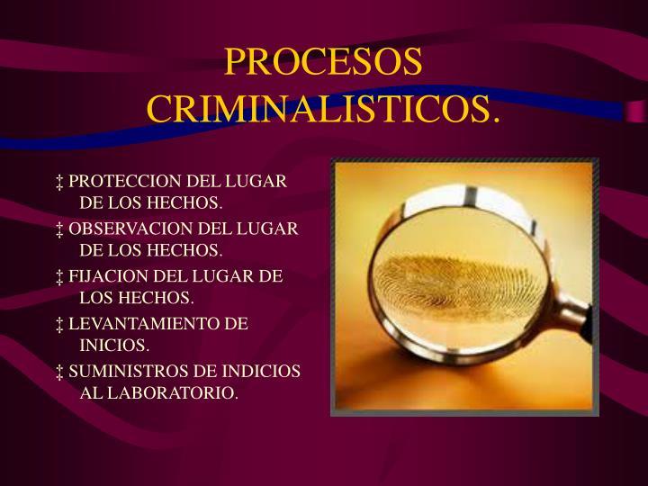 PROCESOS CRIMINALISTICOS.