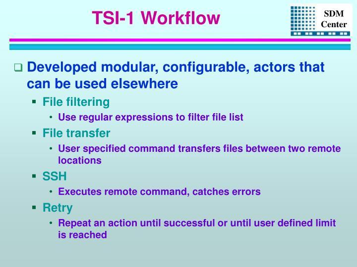 TSI-1 Workflow