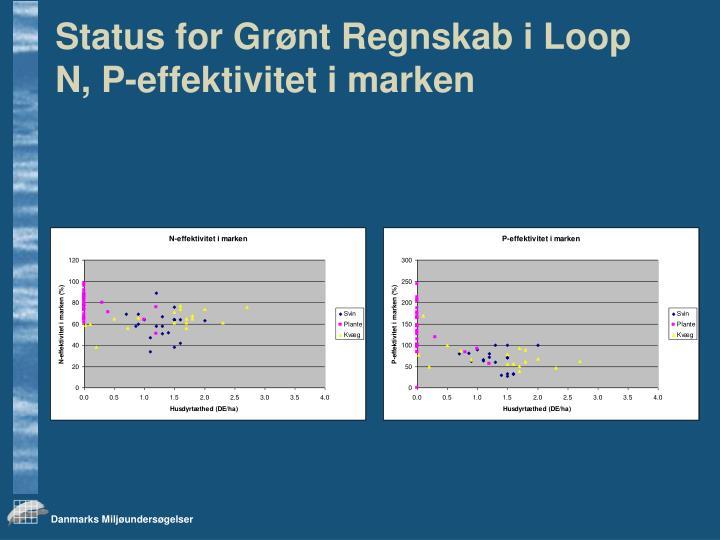 Status for Grønt Regnskab i Loop