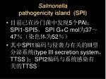 salmonella pathogenicity island spi