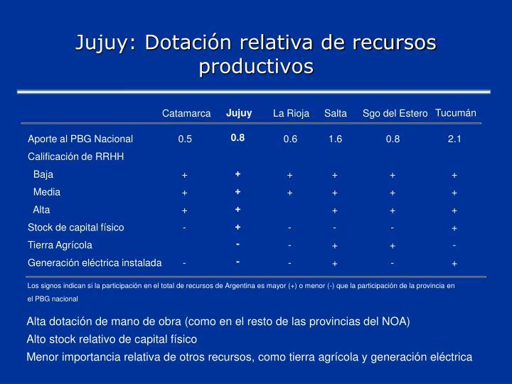 Jujuy: Dotación relativa de recursos productivos