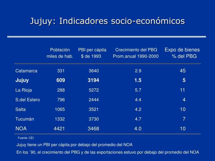 Jujuy: Indicadores socio-económicos
