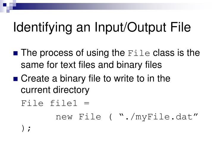 Identifying an Input/Output File