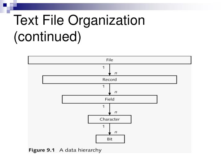 Text File Organization (continued)