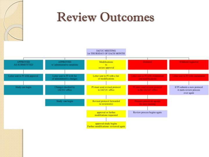 Review Outcomes