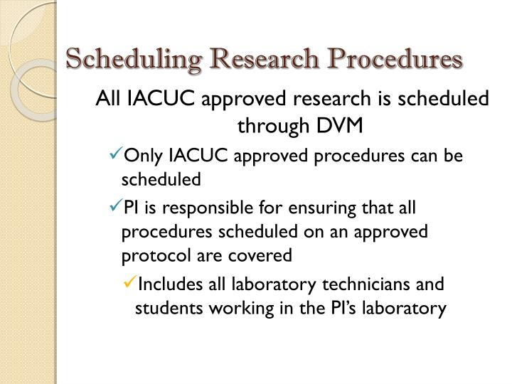 Scheduling Research Procedures