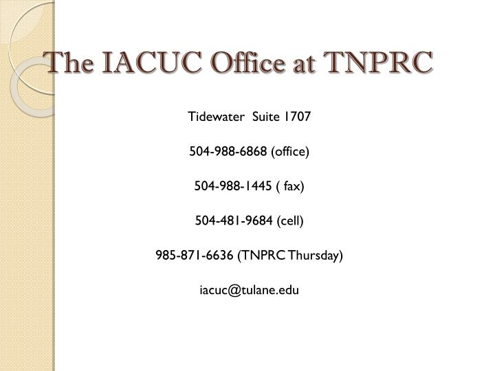The IACUC Office at TNPRC