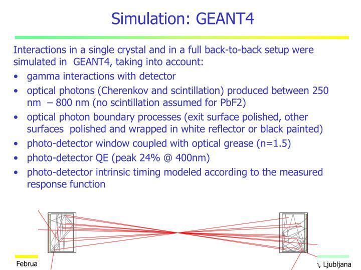 Simulation: GEANT4