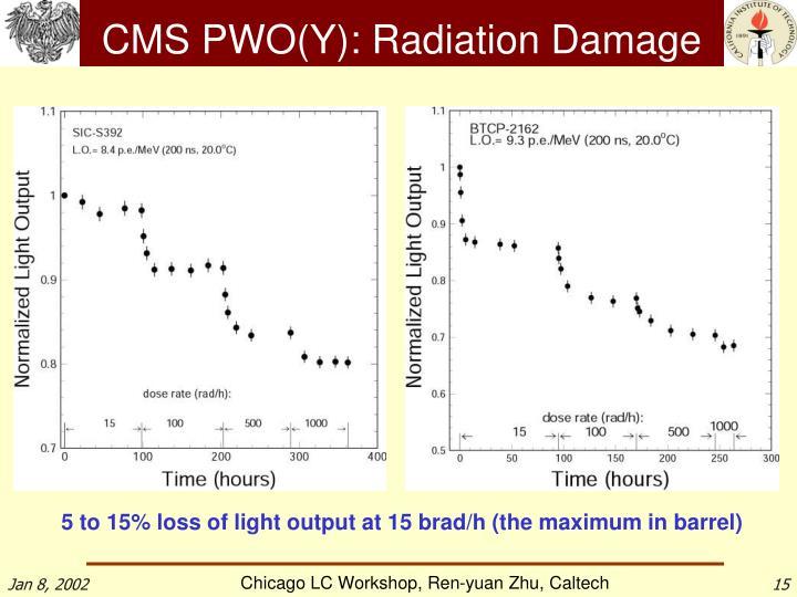 CMS PWO(Y): Radiation Damage