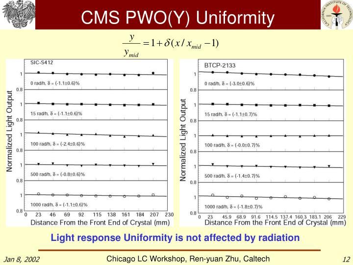CMS PWO(Y) Uniformity