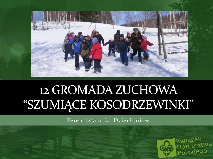 """12 Gromada Zuchowa """"Szumiące"""