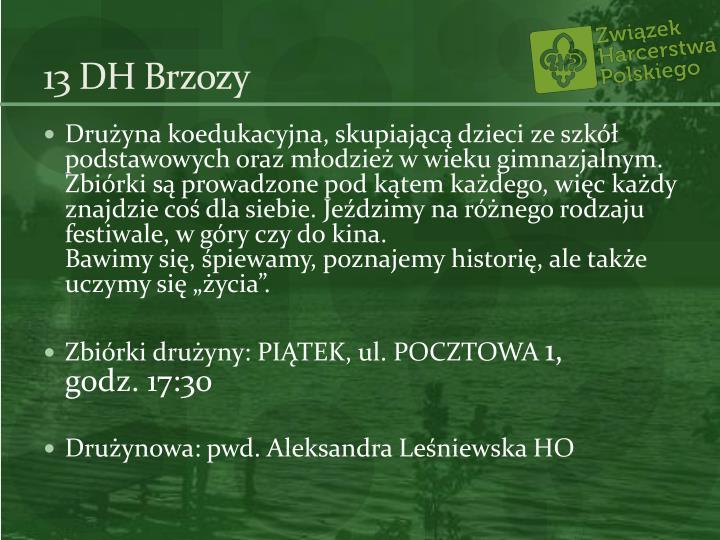 13 DH Brzozy