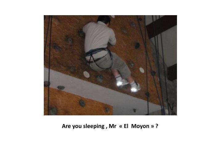 Are you sleeping , Mr  «El  Moyon»?