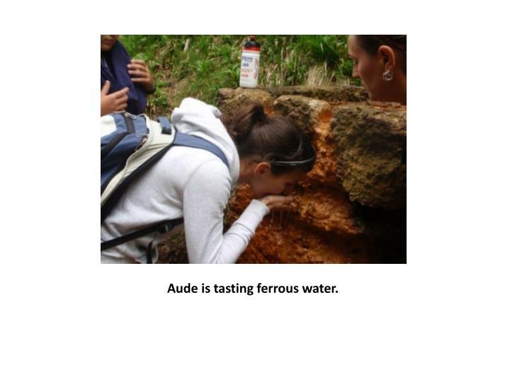 Aude is tasting ferrous water.