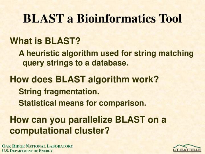 BLAST a Bioinformatics Tool