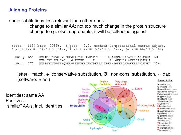 Aligning Proteins